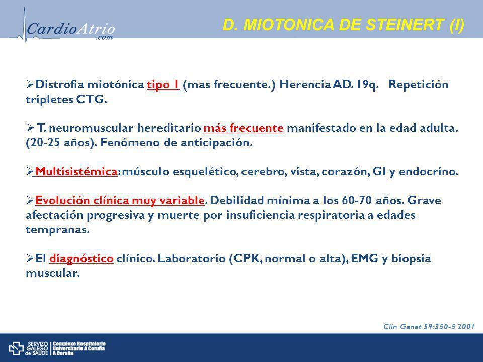 D.MIOTONICA DE STEINERT (I) Distrofia miotónica tipo 1 (mas frecuente.) Herencia AD.