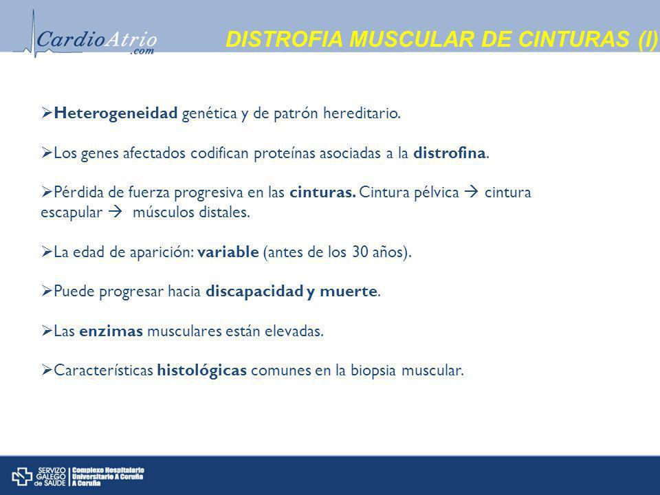 DISTROFIA MUSCULAR DE CINTURAS (I) Heterogeneidad genética y de patrón hereditario.