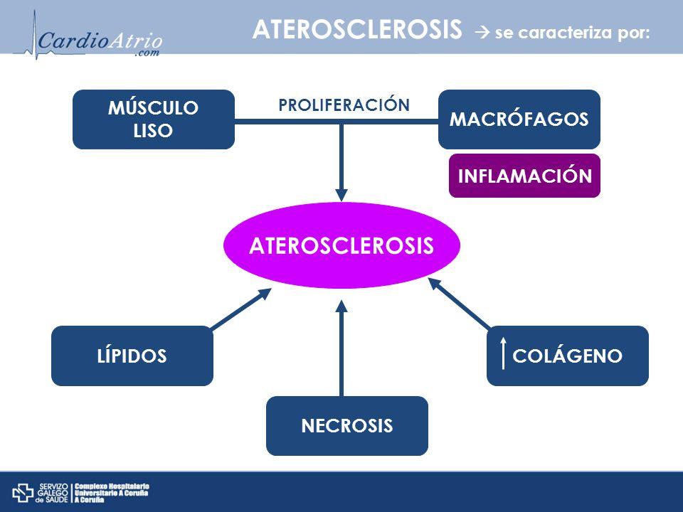 ATEROSCLEROSIS se caracteriza por: ATEROSCLEROSIS MÚSCULO LISO MACRÓFAGOS LÍPIDOS NECROSIS COLÁGENO PROLIFERACIÓN INFLAMACIÓN