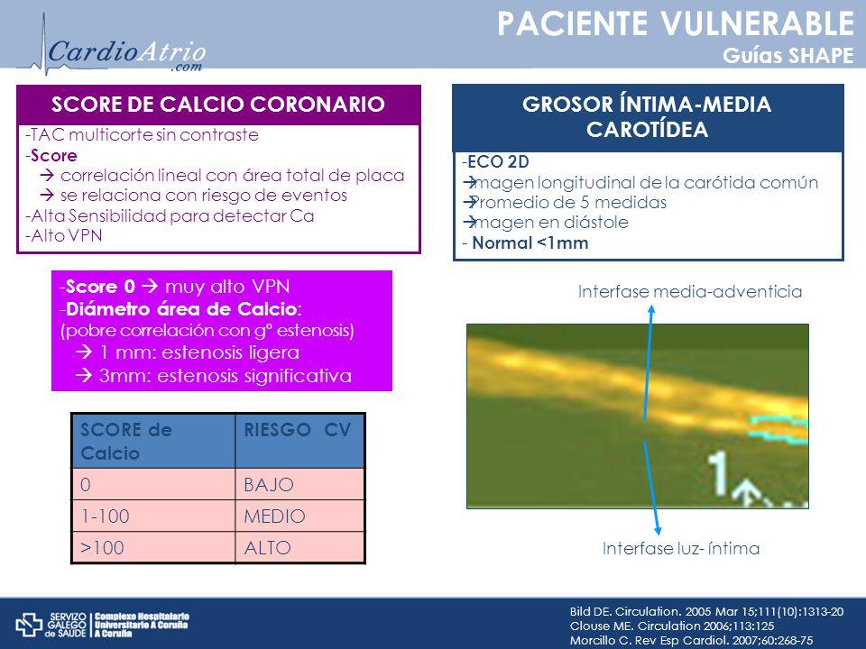 Bild DE. Circulation. 2005 Mar 15;111(10):1313-20 Clouse ME. Circulation 2006;113:125 Morcillo C. Rev Esp Cardiol. 2007;60:268-75 SCORE DE CALCIO CORO