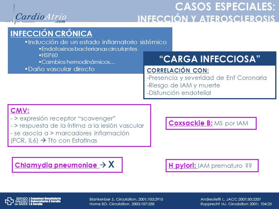 INFECCIÓN CRÓNICA Inducción de un estado inflamatorio sistémico Endotoxinas bacterianas circulantes HSP60 Cambios hemodinámicos… Daño vascular directo