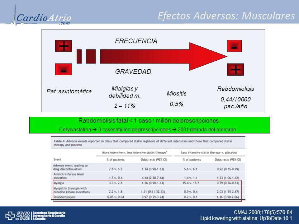 Efectos Adversos: Musculares + +- - GRAVEDAD FRECUENCIA Pat. asintomática Rabdomiolisis 0,44/10000 pac./año Mialgias y debilidad m. 2 – 11% Miositis 0