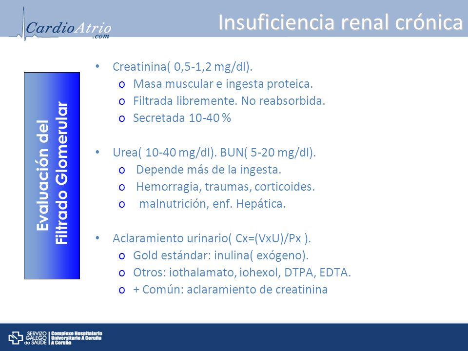 Insuficiencia renal crónica Creatinina( 0,5-1,2 mg/dl). oMasa muscular e ingesta proteica. oFiltrada libremente. No reabsorbida. oSecretada 10-40 % Ur