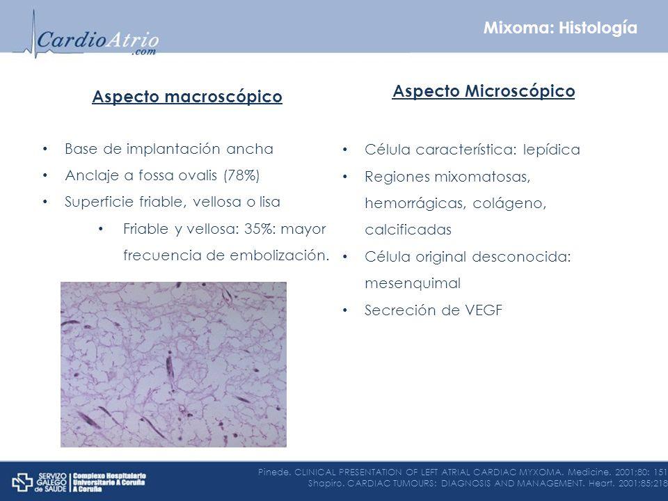 Aspecto macroscópico Base de implantación ancha Anclaje a fossa ovalis (78%) Superficie friable, vellosa o lisa Friable y vellosa: 35%: mayor frecuenc
