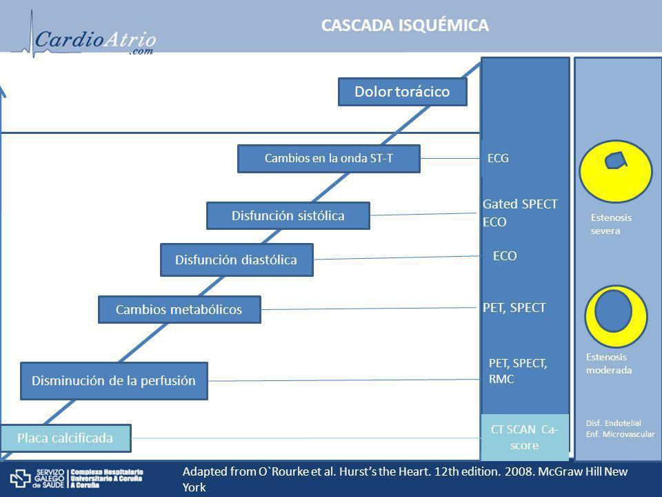 Calcificación placa Placa calcificada Cambios metabólicos Disfunción diastólica Disfunción sistólica Cambios en la onda ST-T Dolor torácico ECG Gated