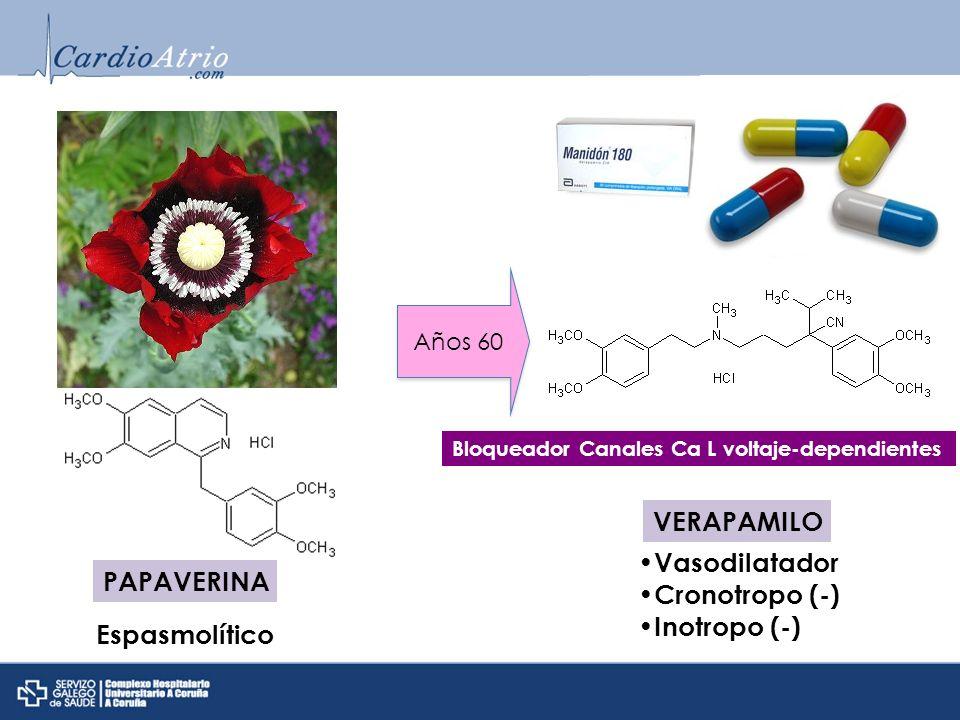 PAPAVERINA Años 60 VERAPAMILO Espasmolítico Vasodilatador Cronotropo (-) Inotropo (-) Bloqueador Canales Ca L voltaje-dependientes