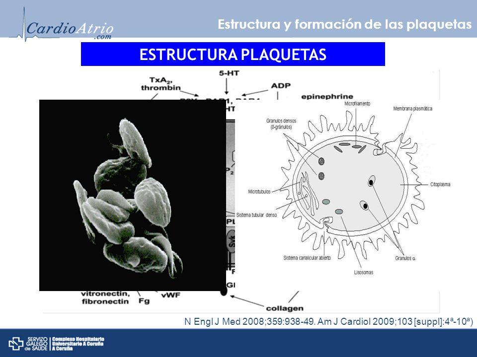 Estructura y formación de las plaquetas CITOPLASMA N Engl J Med 2008;359:938-49.