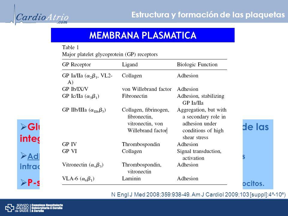 Activación plaquetaria CAMBIO DE MORFOLOGÍA N Engl J Med 2008;359:938-49.
