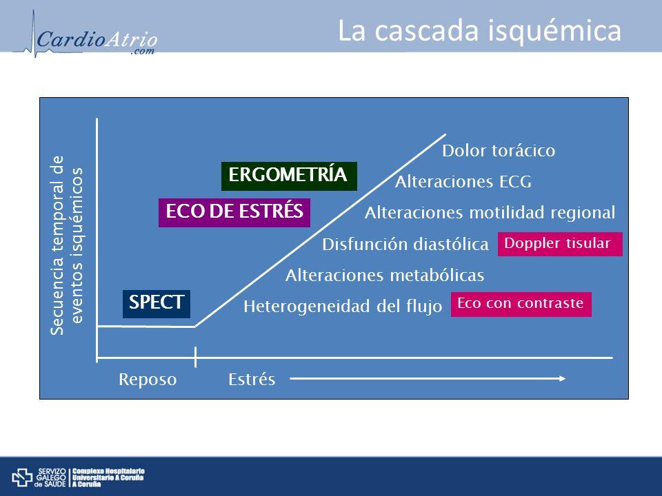 La cascada isquémica t Heterogeneidad del flujo Alteraciones metabólicas Disfunción diastólica Alteraciones motilidad regional Alteraciones ECG Dolor