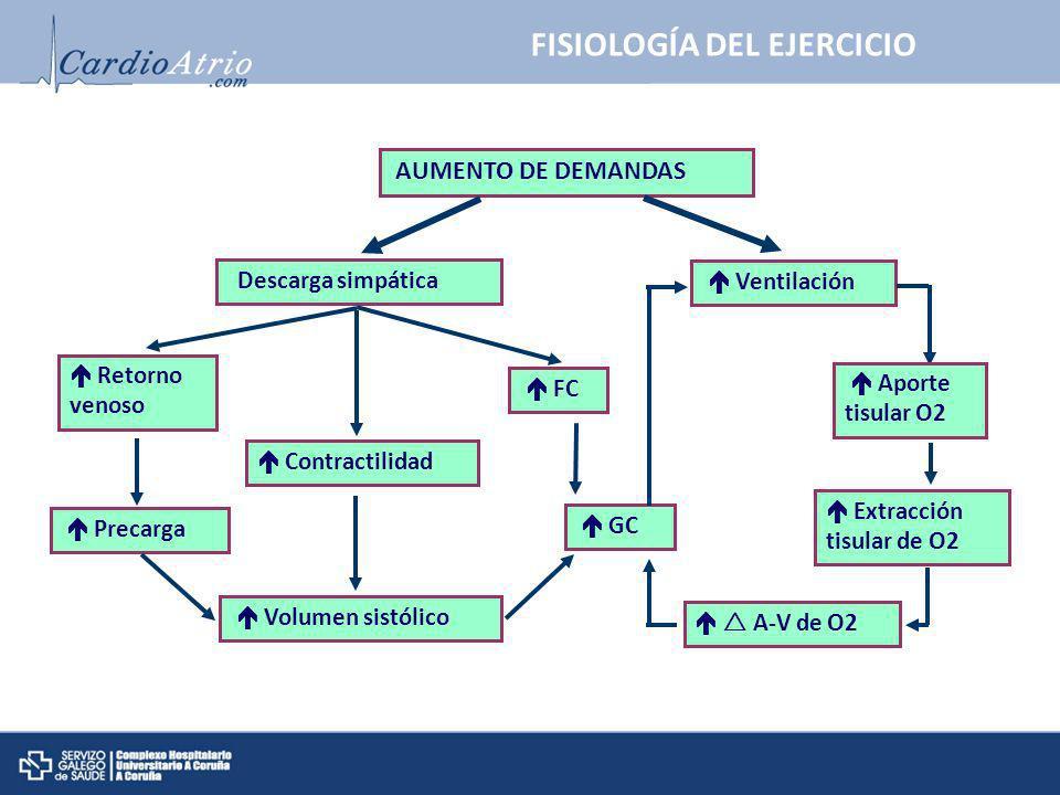 Retorno venoso Precarga Volumen sistólico GC FC Contractilidad AUMENTO DE DEMANDAS Descarga simpática Ventilación Aporte tisular O2 Extracción tisular
