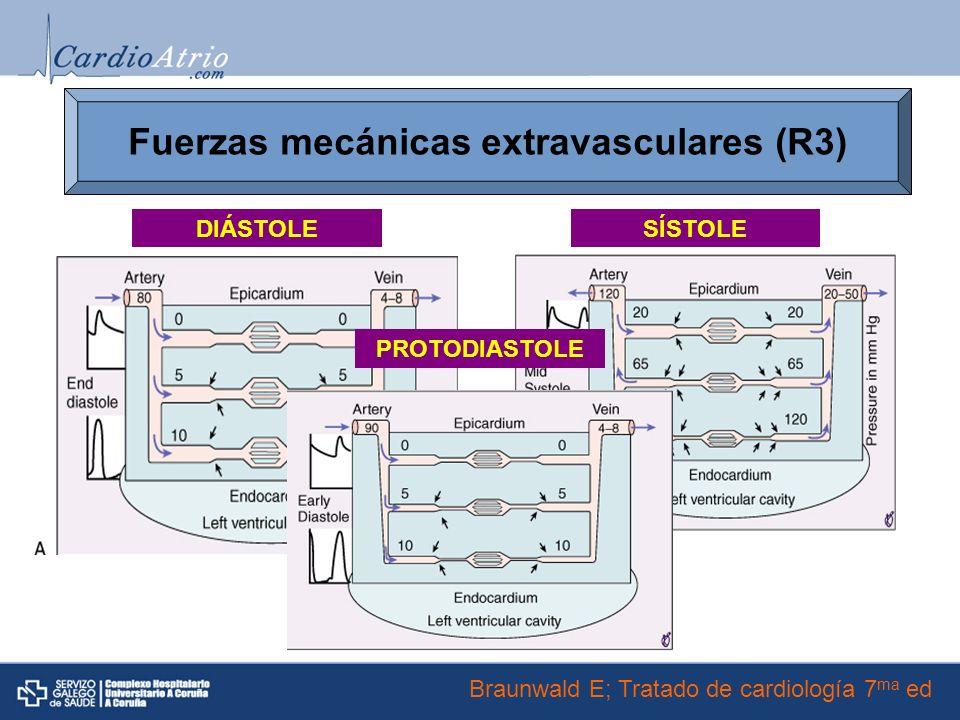 Fuerzas mecánicas extravasculares (R3) DIÁSTOLESÍSTOLE PROTODIASTOLE Braunwald E; Tratado de cardiología 7 ma ed