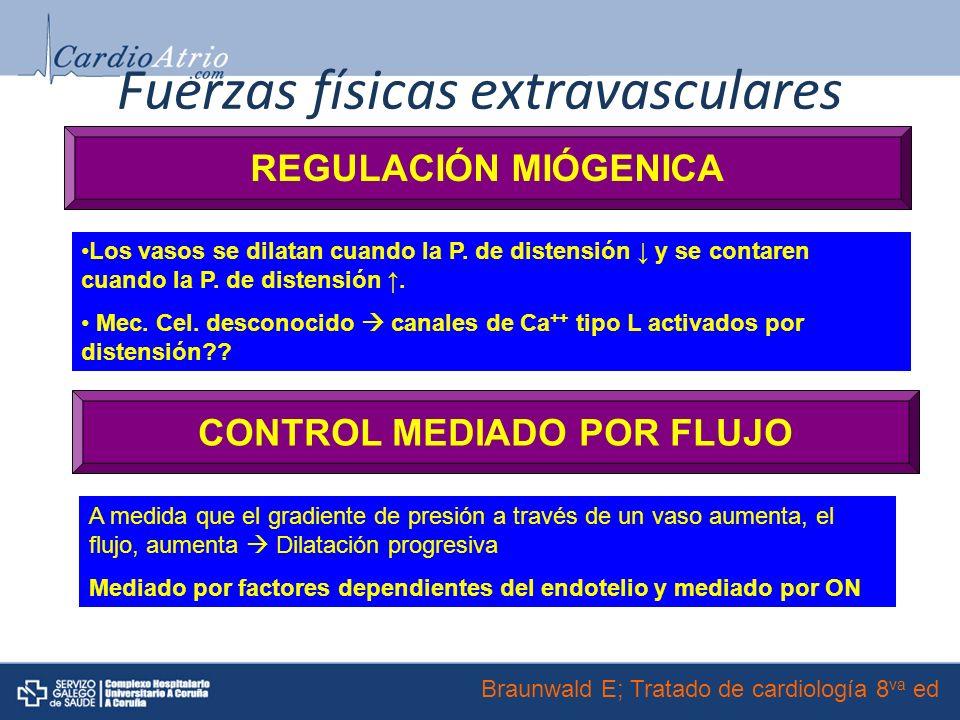 Fuerzas físicas extravasculares REGULACIÓN MIÓGENICA Los vasos se dilatan cuando la P.