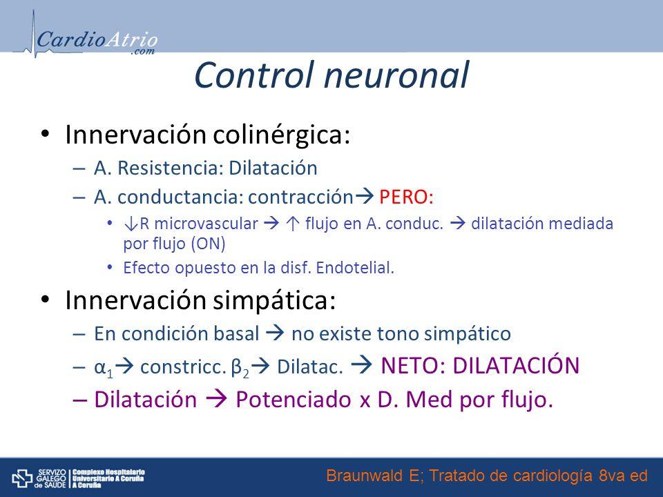 Control neuronal Innervación colinérgica: – A.Resistencia: Dilatación – A.