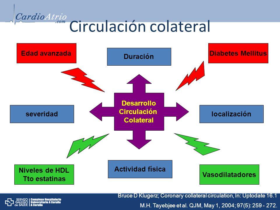Circulación colateral Desarrollo Circulación Colateral Duración localizaciónseveridad Actividad física Edad avanzadaDiabetes Mellitus Bruce D Klugerz; Coronary collateral circulation, In: Uptodate 16.1 M.H.