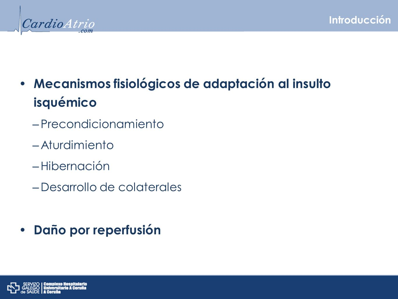 Introducción Mecanismos fisiológicos de adaptación al insulto isquémico – Precondicionamiento – Aturdimiento – Hibernación – Desarrollo de colaterales