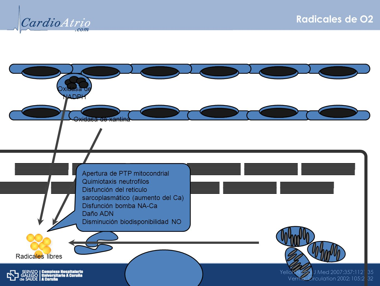 Radicales de O2 Oxidasa de xantina Oxidasa de NADPH Yellon N Engl J Med 2007;357:1121-35 Verma, Circulation 2002; 105:2332 Radicales libres Apertura d