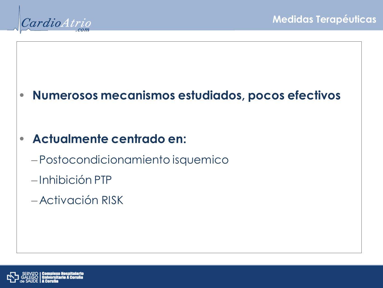 Medidas Terapéuticas Numerosos mecanismos estudiados, pocos efectivos Actualmente centrado en: – Postocondicionamiento isquemico – Inhibición PTP – Ac