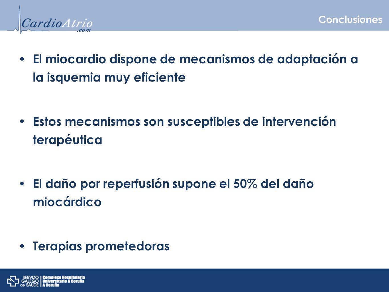 Conclusiones El miocardio dispone de mecanismos de adaptación a la isquemia muy eficiente Estos mecanismos son susceptibles de intervención terapéutic