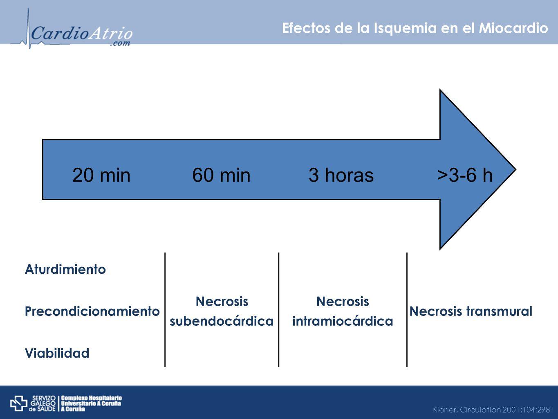 Efectos de la Isquemia en el Miocardio 20 min60 min3 horas>3-6 h Aturdimiento Necrosis subendocárdica Necrosis intramiocárdica Necrosis transmural Pre