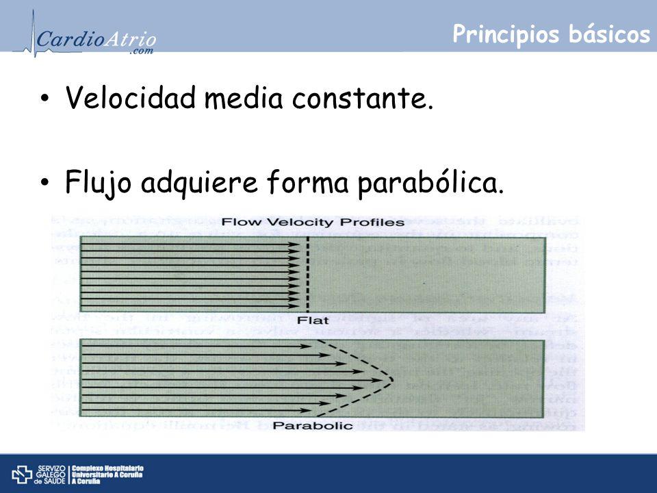 Principios básicos Velocidad media constante. Flujo adquiere forma parabólica.