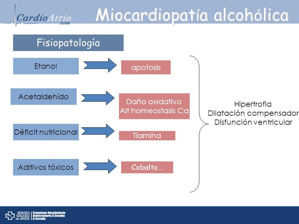 Miocardiopat í a alcoh ó lica Fisiopatología Etanol Acetaldehído Déficit nutricional Aditivos tóxicos apotosis Daño oxidativo Alt homeostasis Ca Tiami