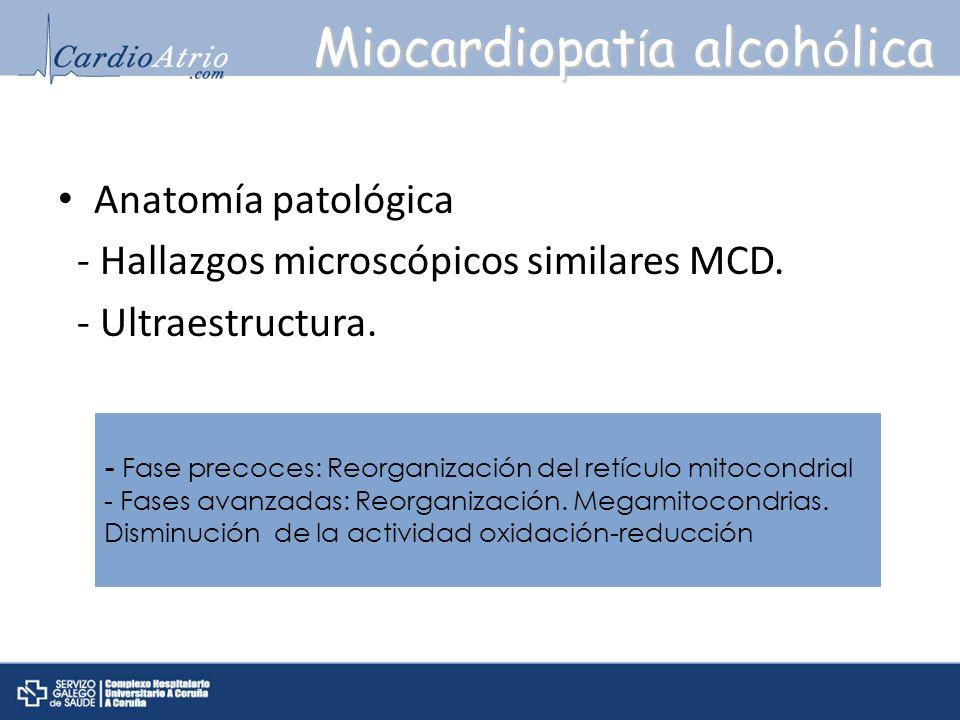 Anatomía patológica - Hallazgos microscópicos similares MCD. - Ultraestructura. Miocardiopat í a alcoh ó lica - Fase precoces: Reorganización del retí