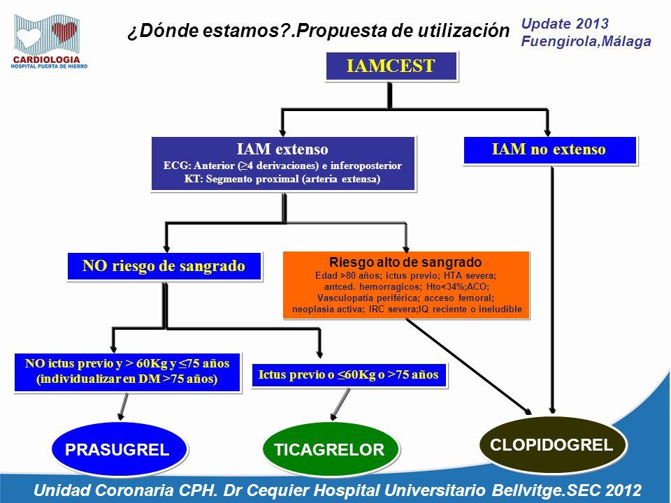 Update 2013 Fuengirola,Málaga ¿Dónde estamos?.Propuesta de utilización Unidad Coronaria CPH. Dr Cequier Hospital Universitario Bellvitge.SEC 2012 IAMC