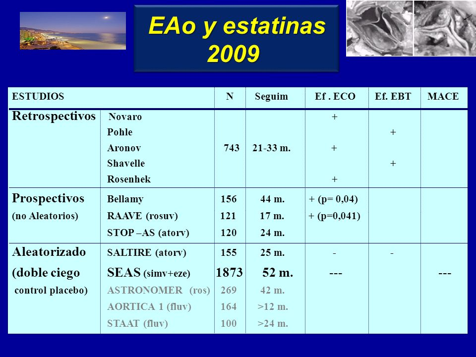 Update 2010 Fuengirola, Málaga Feldman T, JACC 2009; 54:686 IM 2009 IM 2009