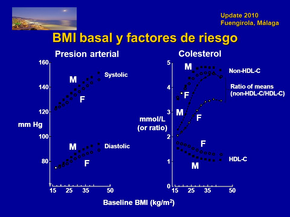 Update 2010 Fuengirola, Málaga BMI basal y factores de riesgo Systolic Diastolic 15253550 80 100 120 140 160 Non-HDL-C -C Ratio of means (non-HDL-C/HDL-C) 15253550 0 1 2 3 4 5 mm Hg Baseline BMI (kg/m 2 ) mmol/L (or ratio) M F M F M F F M M F Systolic Diastolic 15253550 80 100 120 140 160 Non-HDL-C -C Ratio of means (non-HDL-C/HDL-C) 15253550 0 1 2 3 4 5 mm Hg Baseline BMI (kg/m 2 ) mmol/L (or ratio) M F M F M F F M M F Presion arterial Colesterol