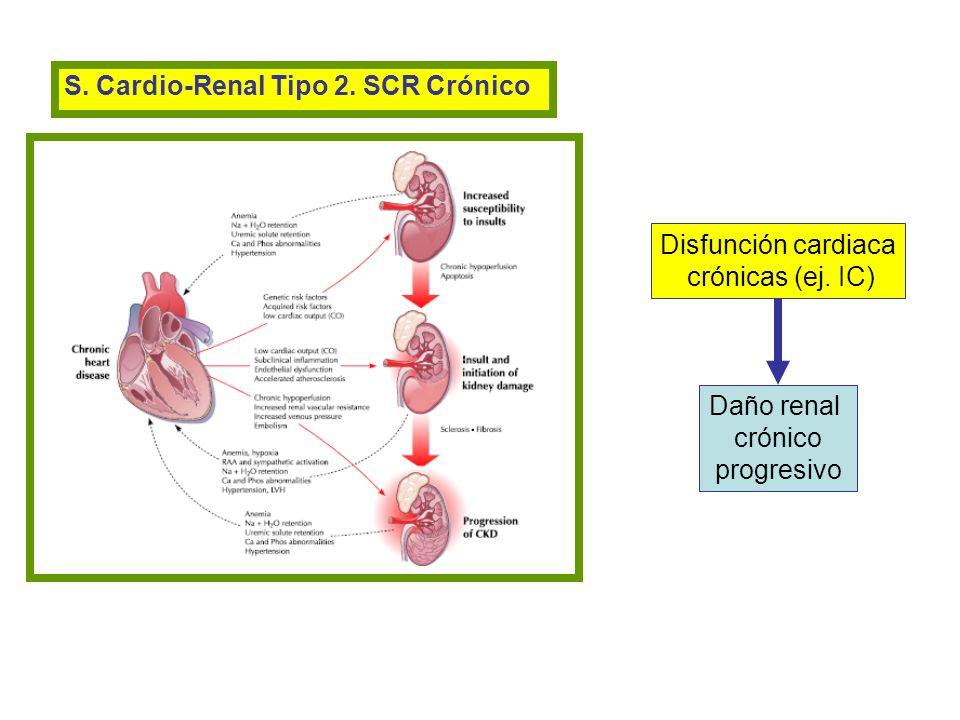 S. Cardio-Renal Tipo 2. SCR Crónico Disfunción cardiaca crónicas (ej. IC) Daño renal crónico progresivo