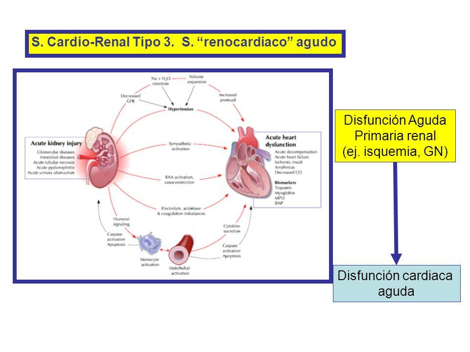 S. Cardio-Renal Tipo 3. S. renocardiaco agudo Disfunción Aguda Primaria renal (ej. isquemia, GN) Disfunción cardiaca aguda