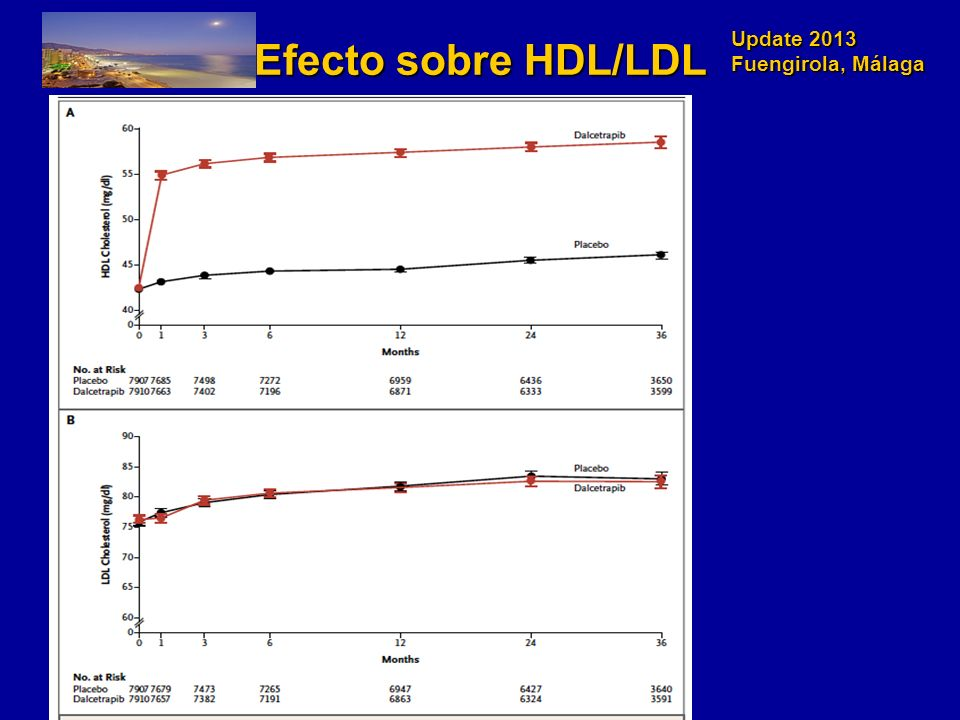 Update 2013 Fuengirola, Málaga Percentage change from baseline in calculated low-density lipoprotein cholesterol (LDL-C) to week 12.