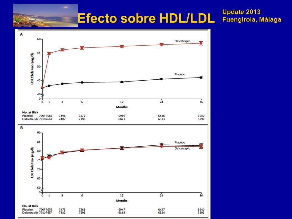 Update 2013 Fuengirola, Málaga Efecto sobre HDL/LDL