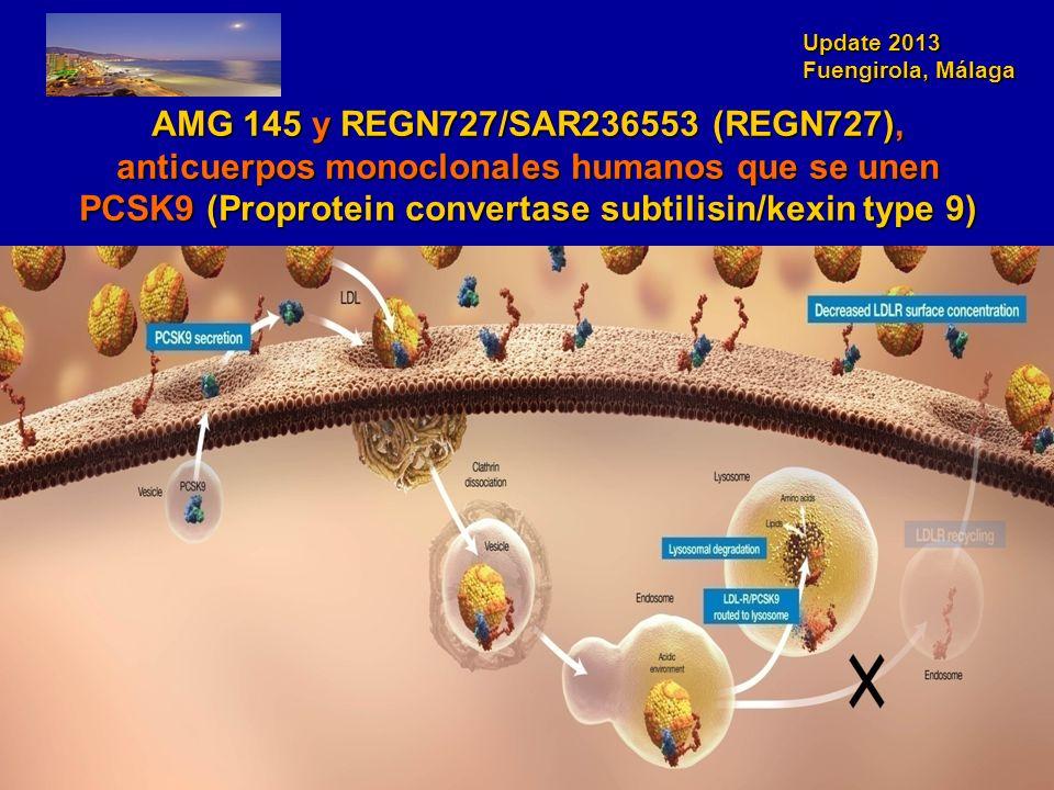 Update 2013 Fuengirola, Málaga AMG 145 y REGN727/SAR236553 (REGN727), anticuerpos monoclonales humanos que se unen PCSK9 (Proprotein convertase subtil