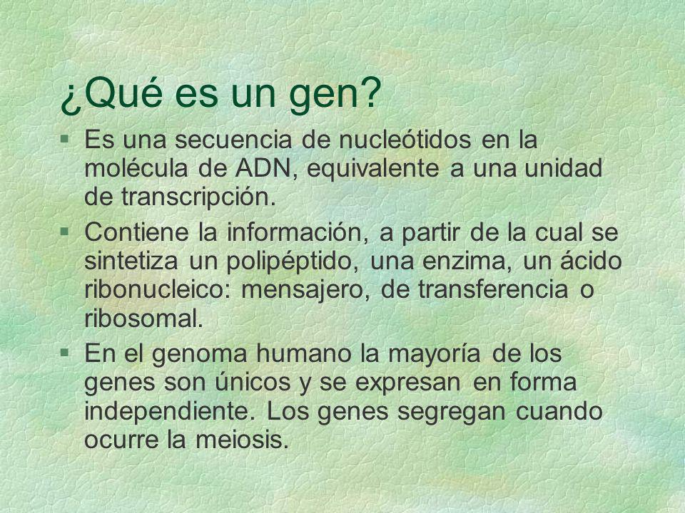 ¿Qué es un gen? §Es una secuencia de nucleótidos en la molécula de ADN, equivalente a una unidad de transcripción. §Contiene la información, a partir