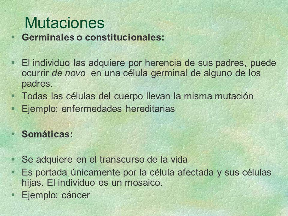 Mutaciones §Germinales o constitucionales: §El individuo las adquiere por herencia de sus padres, puede ocurrir de novo en una célula germinal de algu