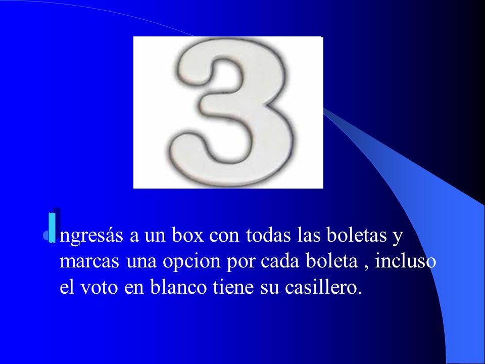ngresás a un box con todas las boletas y marcas una opcion por cada boleta, incluso el voto en blanco tiene su casillero.