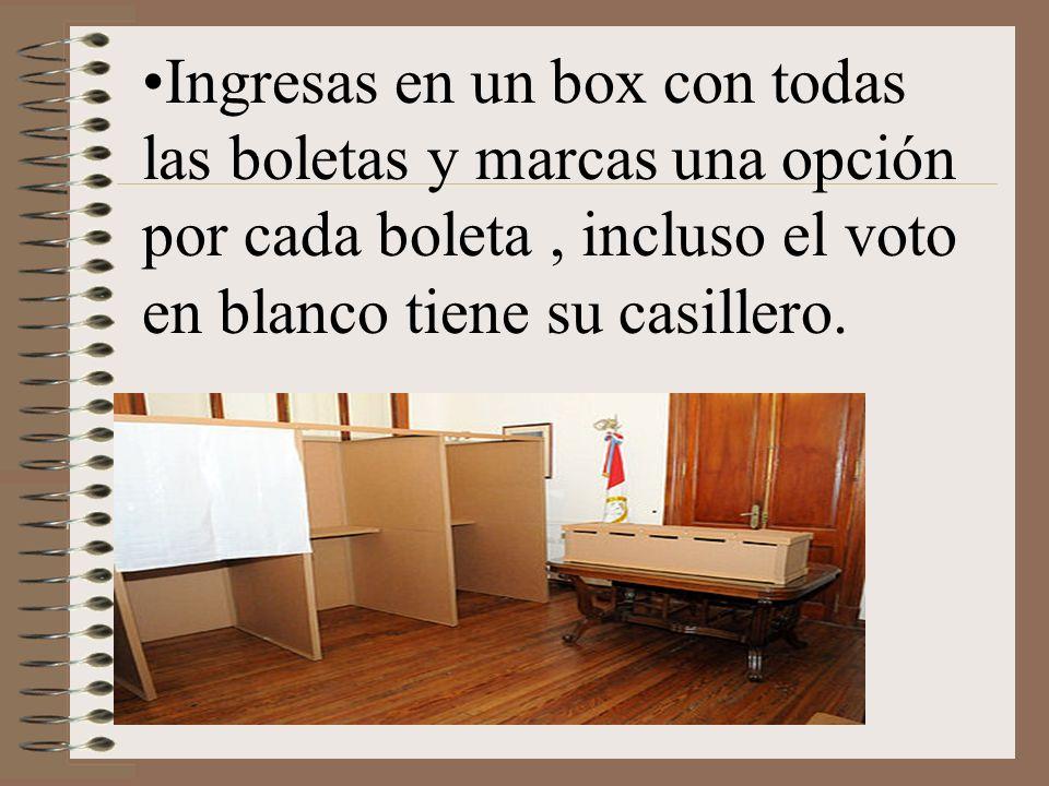 Ingresas en un box con todas las boletas y marcas una opción por cada boleta, incluso el voto en blanco tiene su casillero.
