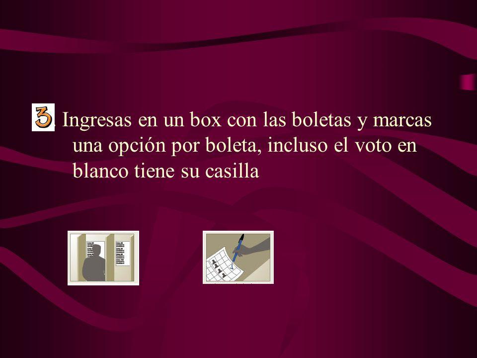 3. Ingresas en un box con las boletas y marcas una opción por boleta, incluso el voto en blanco tiene su casilla