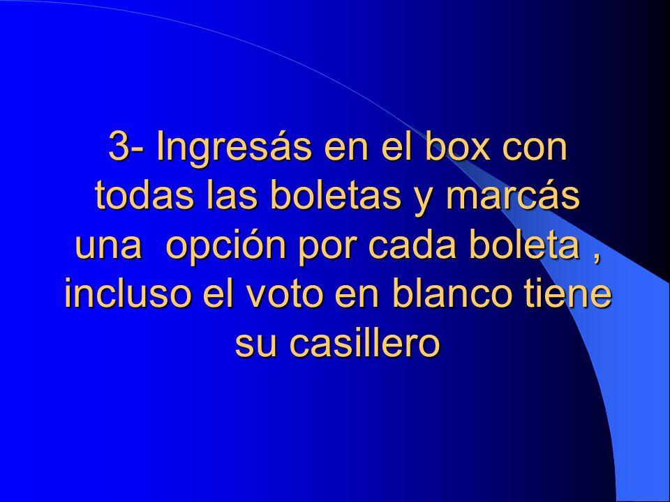3- Ingresás en el box con todas las boletas y marcás una opción por cada boleta, incluso el voto en blanco tiene su casillero