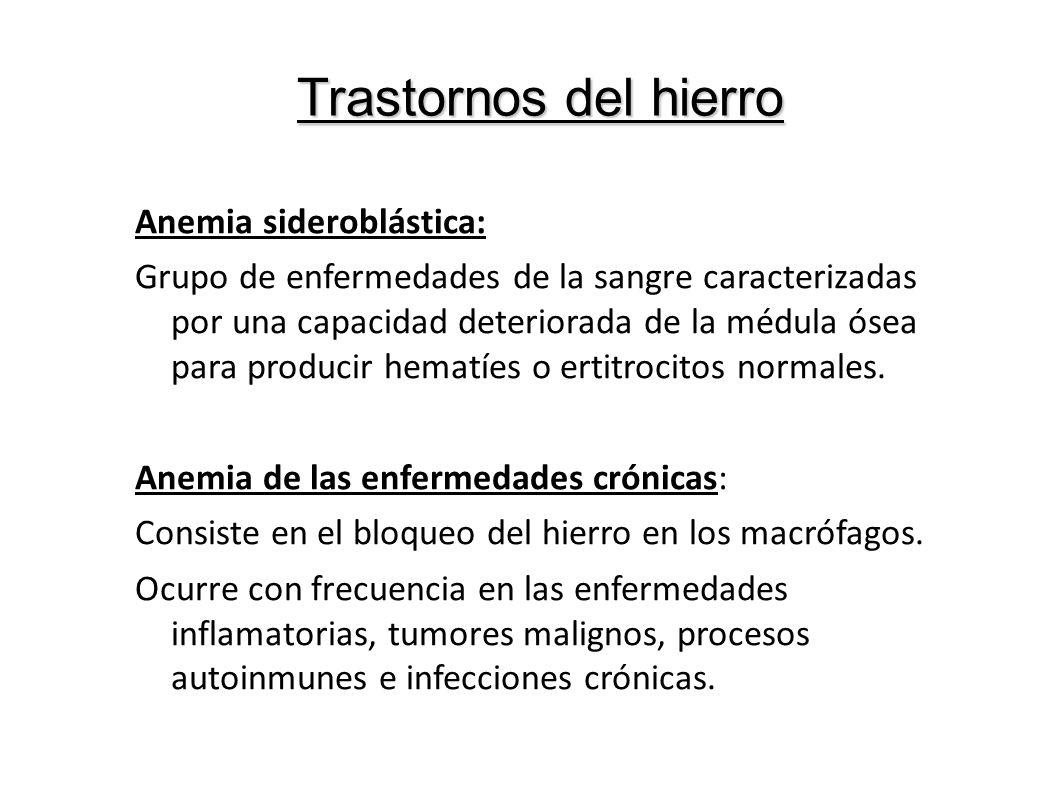 Anemia sideroblástica: Grupo de enfermedades de la sangre caracterizadas por una capacidad deteriorada de la médula ósea para producir hematíes o erti