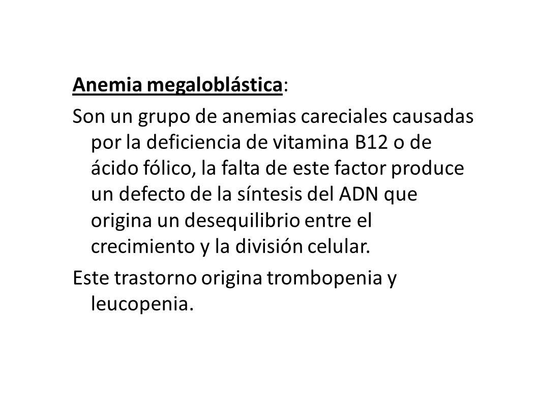 Anemia megaloblástica: Son un grupo de anemias careciales causadas por la deficiencia de vitamina B12 o de ácido fólico, la falta de este factor produ