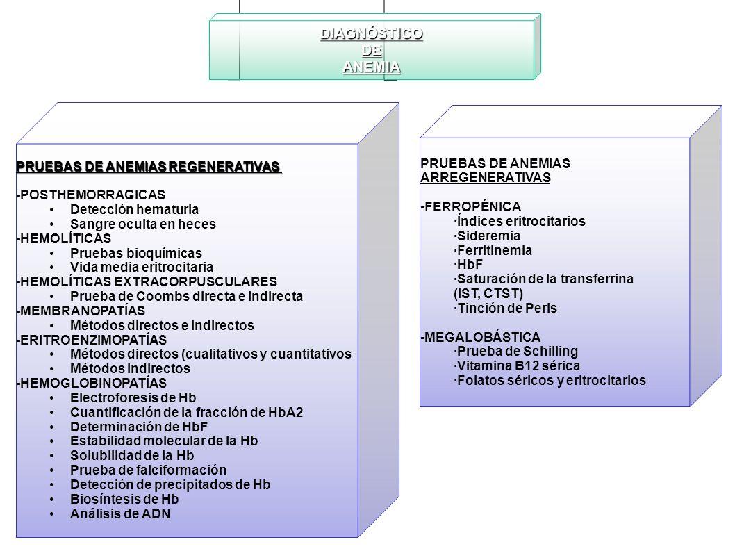 DIAGNÓSTICODEANEMIA PRUEBAS DE ANEMIAS REGENERATIVAS -POSTHEMORRAGICAS Detección hematuria Sangre oculta en heces -HEMOLÍTICAS Pruebas bioquímicas Vid