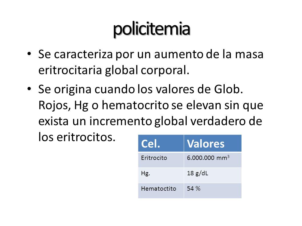 policitemia Se caracteriza por un aumento de la masa eritrocitaria global corporal. Se origina cuando los valores de Glob. Rojos, Hg o hematocrito se
