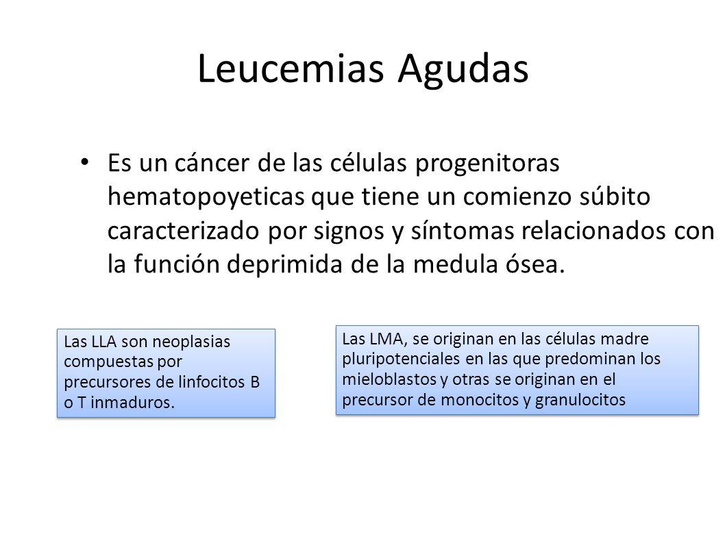 Leucemias Agudas Es un cáncer de las células progenitoras hematopoyeticas que tiene un comienzo súbito caracterizado por signos y síntomas relacionado