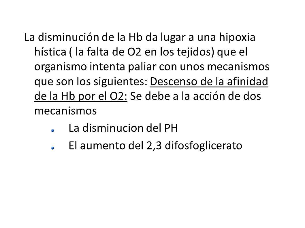 La disminución de la Hb da lugar a una hipoxia hística ( la falta de O2 en los tejidos) que el organismo intenta paliar con unos mecanismos que son lo