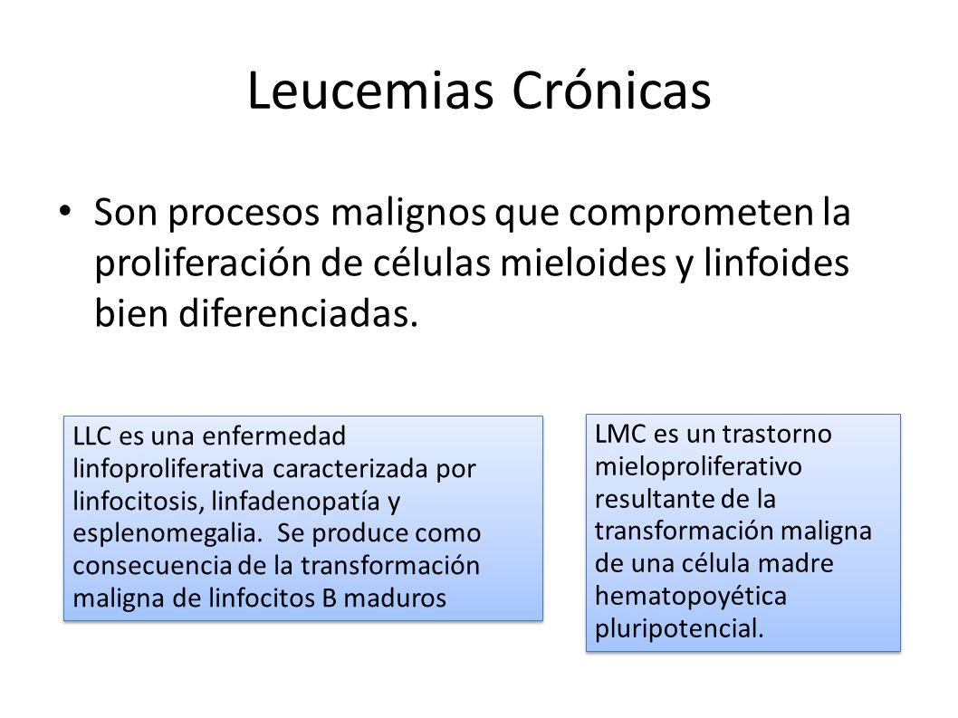 Leucemias Crónicas Son procesos malignos que comprometen la proliferación de células mieloides y linfoides bien diferenciadas. Fisiopatologia/ Porth /