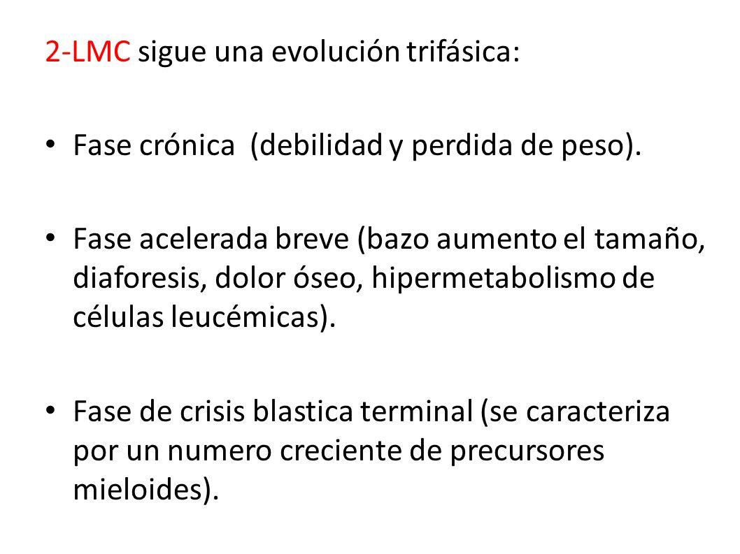 2-LMC sigue una evolución trifásica: Fase crónica (debilidad y perdida de peso). Fase acelerada breve (bazo aumento el tamaño, diaforesis, dolor óseo,