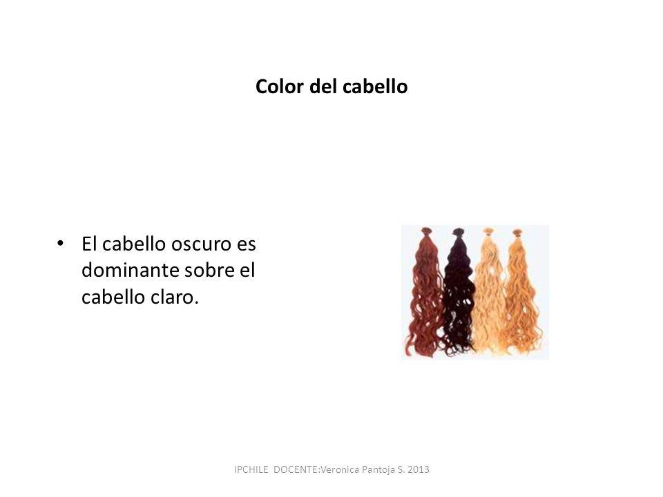 Color del cabello El cabello oscuro es dominante sobre el cabello claro. IPCHILE DOCENTE:Veronica Pantoja S. 2013