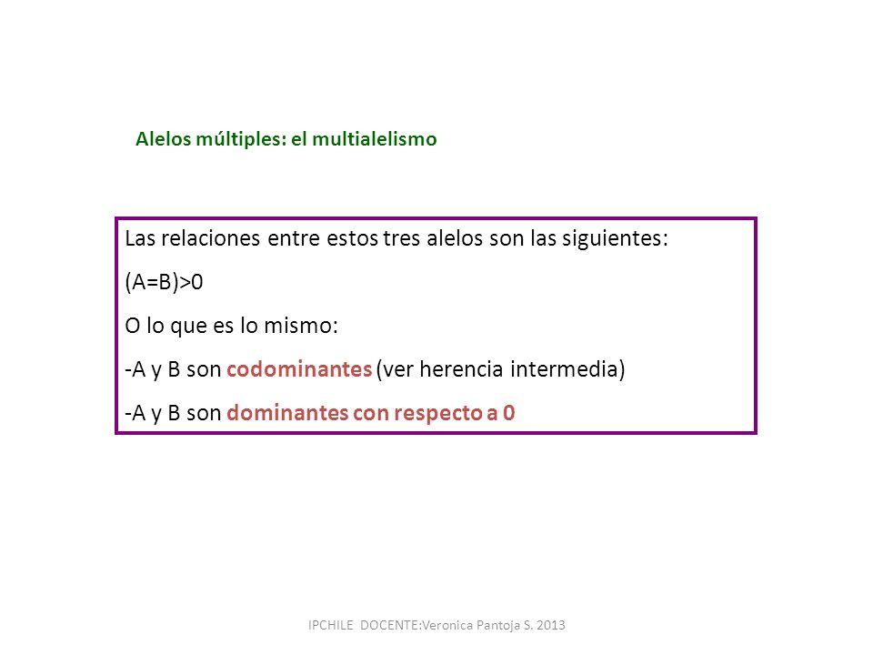 Alelos múltiples: el multialelismo Las relaciones entre estos tres alelos son las siguientes: (A=B)>0 O lo que es lo mismo: -A y B son codominantes (v